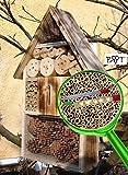 Große Nistkästen XXL Insekten Insektenhotel LOTUS + 2 x Sichtglas + Marienkäferhaus + Schmetterlingshaus, gebrannt geflammt schwarz natur Deko Insektenhotel LOTUS,groß 50 cm mit Lotus-Effekt Oberflächen Beschichtung und 2 Sichtgläsern 8 und 11 mm Beobachtungsröhrchen komplett mit Füllmaterial, natürliche Blattlausbekämpfung, ein toller Insektenkasten - Insektenhaus