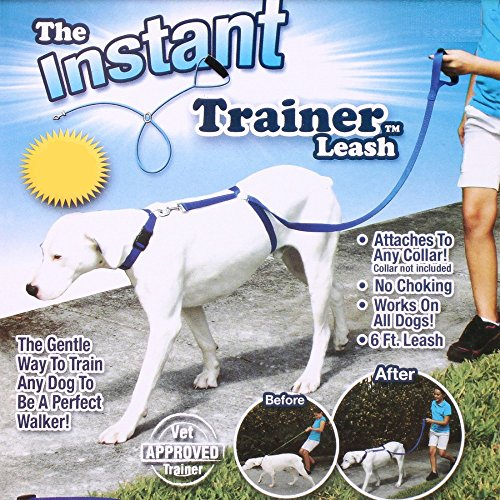 Doggie-Style-Store-Blue-Instant-Trainer-Dog-Training-Lead-Stop-Pulling-Leash