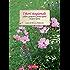 I fiori stagionali: Colori e profumi a pronto effetto e in poco spazio