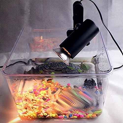 Pink Lizard Inkubation Lampe UVB Keramik UV Wärme Inhaber Licht CHIOCCIA Reptil Licht Aussitzen