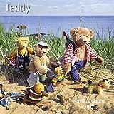 Teddy 2017