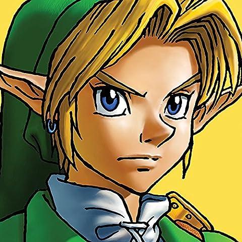 The Legend of Zelda Link 40x 40cm Toile, multicolore