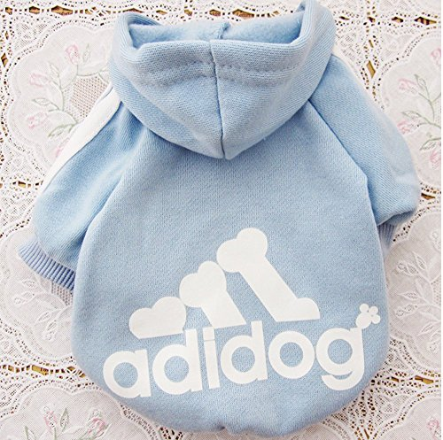 Green House - Pet Dog Cat Sweater Puppy T shirt con cappuccio cappotto caldo Clothes Apparel cielo blu (S)
