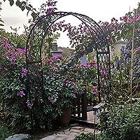 Amazon.es: Pérgolas - Decoración de exterior: Jardín