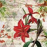 Ambiente Papierservietten - Servietten Lunch / Party / ca. 33x33cm Red Amaryllis - Weihnachten - Rote Amaryllis - Ideal Als Geschenk Und Tisch-Deko