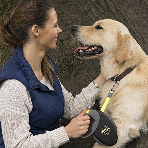 flexi Roll-Leine GIANT L 8 m Gurt für Hunde bis 50 kg, schwarz / neongelb - 5
