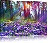 Lavendel im Wald, Bild auf Leinwand, XXL riesige Bilder fertig gerahmt mit Keilrahmen, Kunstdruck auf Wandbild mit Rahmen, günstiger als Gemälde oder Ölbild, kein Poster oder Plakat, Format:80x60 cm