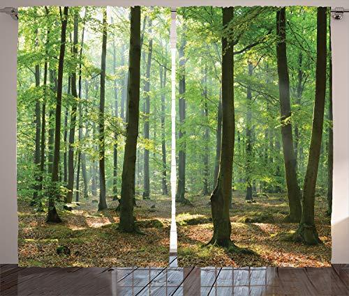 ABAKUHAUS Natur Rustikaler Gardine, Morgen Wald Bauernhaus, Schlafzimmer Kräuselband Vorhang mit Schlaufen und Haken, 280 x 245 cm, -