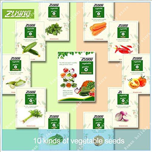 ZLKING 1000 Pcs Mixed Légumes biologiques Bonsai Graines Nature Bio populaire Graines de plantes pour jardin Cuisine Plantation