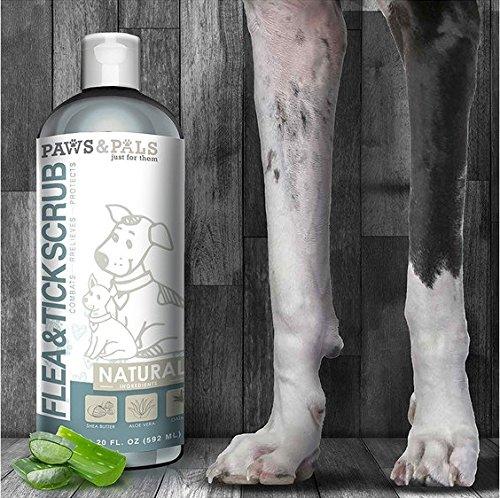 Paws & Pals dog-shampoo Natural acondicionador–Martillo