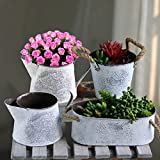 Sue Supply Maceta de hierro de metal con asas de cuerda de cáñamo para flores y jardín,...
