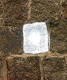 Wisdom LED-Plastersteinleuchte, 5x5,5cm, weiß leuchtende Lichtsteine, Leuchtstein, Pflastersteine.