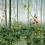 YiShuQiang Wallpaper Fototapeten Lotus Bambus Forest Landscape Wall Stickers Wanddekoration für Zuhause Wandbilder Wohnzimmer Schlafzimmer Dekoration Fototapetens