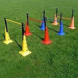 4 x Kombi-Leiterhürde im Set für Hürdenparcours, Stange 100 cm, für Agility - Hundetraining