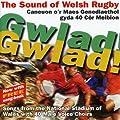 Gwlad! Gwlad! The Sound Of Welsh Rugby by Sain