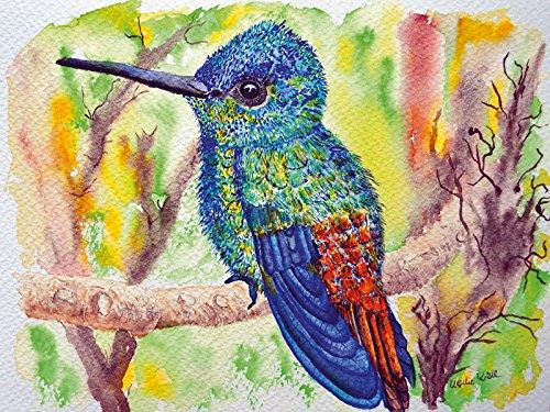 Artland Poster oder Leinwand-Bild fertig aufgespannt auf Keilrahmen mit Motiv Ulrike Kröll Kolibri in schillernden Farben Tiere Vögel Malerei Bunt D3HC