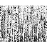 Fototapete Wald Birken - Vlies Wand Tapete Wohnzimmer Schlafzimmer Büro Flur Dekoration Wandbilder XXL Moderne Wanddeko - 100% MADE IN GERMANY - 9288010a