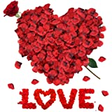 RANJIMA Petali di Rosa, 3000 Pezzi Petali di Rosa Rossa finti, Petali Rose Rosse, Rose Petals per Matrimonio Festa di San Val