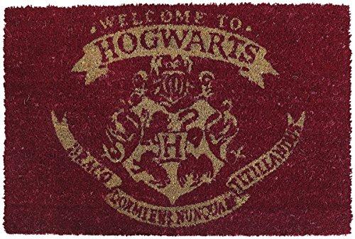 Felpudo Harry Potter 40x 60cm alfombra limpiador Zapatillas Puerta