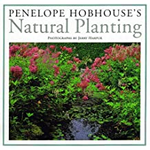 Penelope Hobhouse's Natural Planting