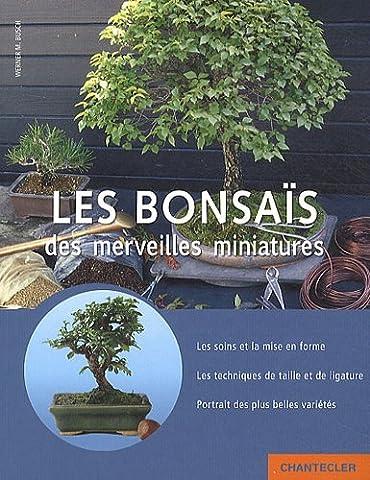 Les bonsaïs, des merveilles miniatures