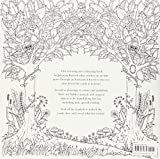 Enchanted Forest: An Inky Quest and Colouring Book Bild 1