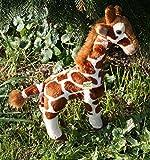 Giraffe ca.25 cm Plüschtier Kuscheltier Stofftier Plüschgiraffe 7 von Zaloop