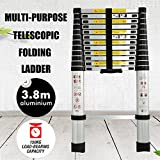 3.8m 3,8m multifonctions Aluminium Échelle télescopique extension extensible Steps Portable Capacité de 149,7kilogram Bateau britannique