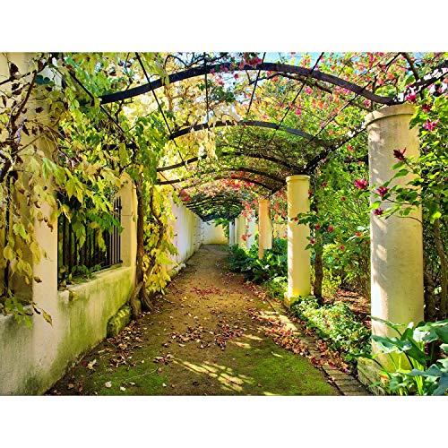 *Fototapete Garten Natur 3D Vlies Wand Tapete Wohnzimmer Schlafzimmer Büro Flur Dekoration Wandbilder XXL Moderne Wanddeko – 100% MADE IN GERMANY – Blumen Herbst Runa Tapeten 9003010a*