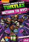 Teenage Mutant Ninja Turtles: Return To NYC [DVD] [2014]