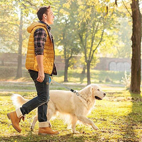 Zoom IMG-3 guinzaglio per cani retrattile dotato