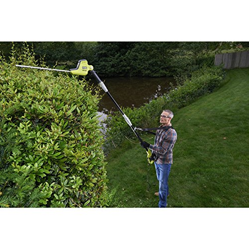 Ryobi RPT4545M Pole Hedge Trimmer with Extension Pole, 450 W
