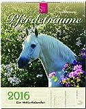 PFERDETRÄUME - Original Stürtz-Kalender 2016 - Hochformat-Kalender 36 x 45 cm mit Platz für Notizen (Notiz-Kalender)