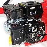 Benzinholzpalter stehend/liegend 30T 13ps Benzinmotor - 4