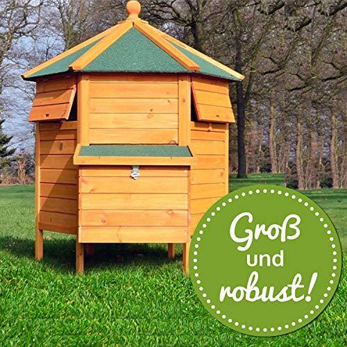Zooprimus – Hühnerhaus Pavillon - 4