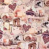 SCHÖNER LEBEN. Digitaldruck Baumwolljersey Jersey Stoff Lovely Paris Altrosa braun grau 1,55m
