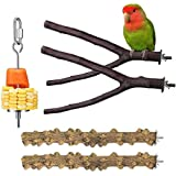 NeoStyle Parrot Toy Birds Stand Stick Stop Lever Perch Prickly Ash Wood Frame Station Supplies Appliances Birds Birds Chew To