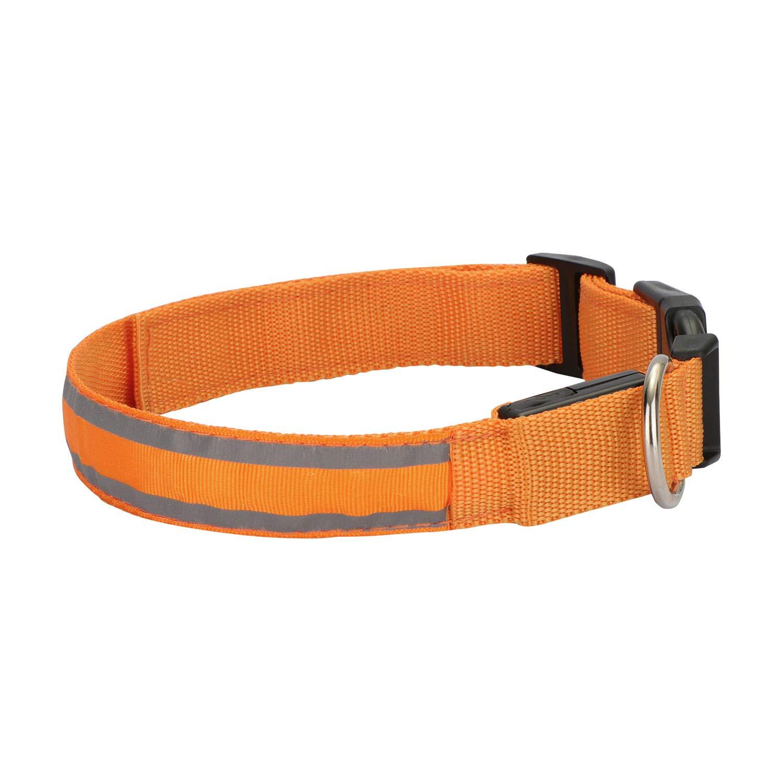 Hengu LED Collar para Perros, USB Recargable Iluminado Collar para Perros, Mascotas, Cachorros, con Rayas Reflectantes y Hebilla Ajustable garantizar la Seguridad Nocturna