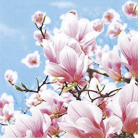 20 Servietten Blooming Magnolia - Blühende Magnolien / Blumen 33x33cm -