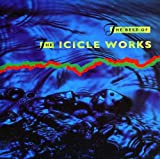 the Icicle Works: The Best of... (Audio CD)