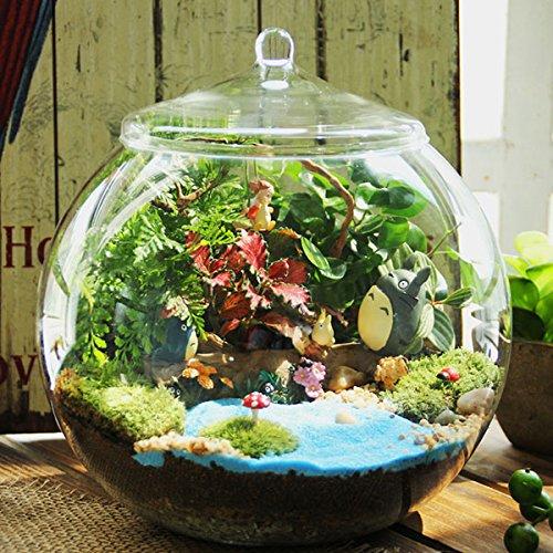 Bluelover Decoración DIY Moss Micro Paisaje Eco Cristal Botella Suculentas Plantas Flor Maceta Hogar Jardín