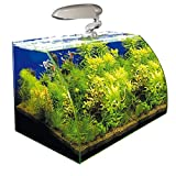 Wave Box Vision River Cosmos 30 lts