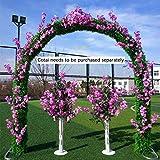 SUNNAIYUAN Arrampicata Garden Metallo impianto Pergola Wedding Arch Decorazione for Feste del Partito della Decorazione della casa Outdoor (Color : B)