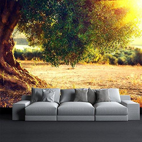 Olive Tree Al Tramonto parete Paesaggio murale Food & Drink Wallpaper Foto disponibile in 8 taglie Gigantesco Digitale