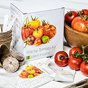 Plant Theatre Wacky Tomato Kit - 6 Weird & Wonderful Varieties to Grow - Great Gift