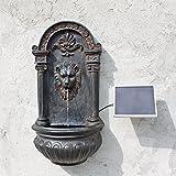 CLGarden Solar Wandbrunnen NSP8 Springbrunnen mit Solarpumpe Solarbrunnen