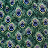 Best Home Fashion 120s - 120 Paper Napkins Peacock Feathers 33 x 33 Review