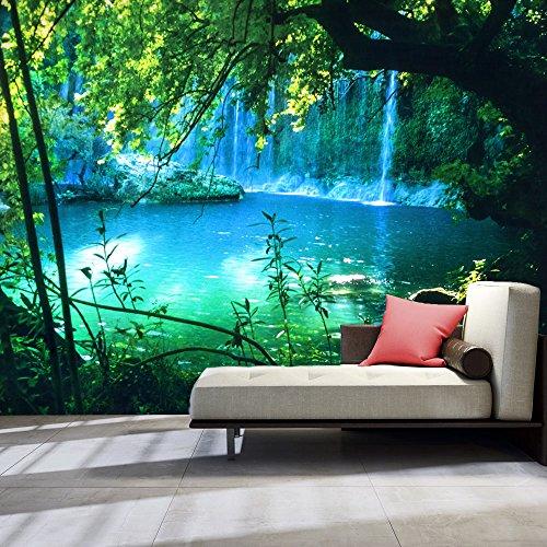 murando - Fototapete Natur 350x256 cm - Vlies Tapete - Moderne Wanddeko - Design Tapete - Wandtapete - Wand Dekoration - Landschaft Wasserfall c-B-0132-a-a