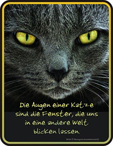 Original RAHMENLOS Blechschild für den Katzenfreund: die Augen einer Katze sind die Fenster … Nr.3480