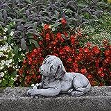 Massive Pierre Figurine Statue Chien Labrador en en pierre pour décoration de jardin Résiste au gel Espace Décoration